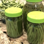 Fermented Dilly Green Beans