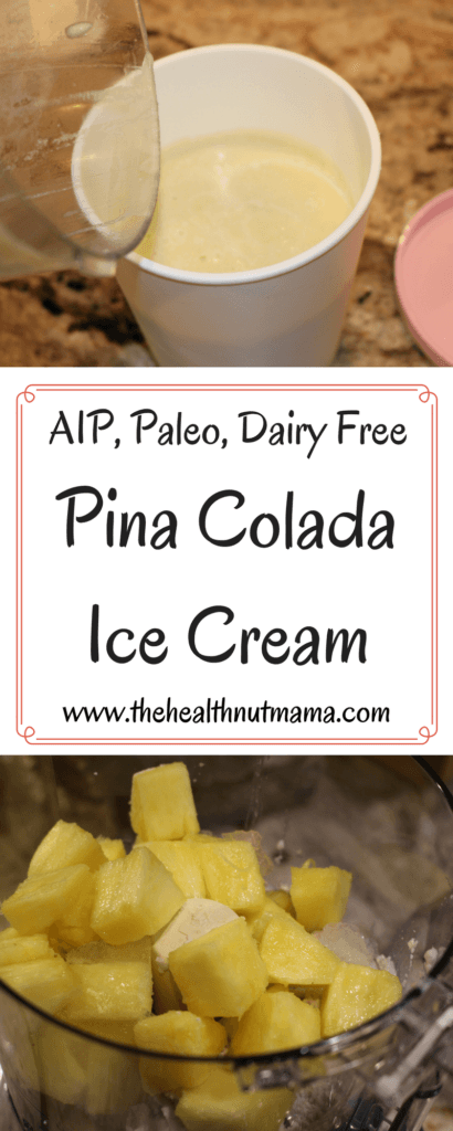 AIP Pina Colada Ice Cream - Delicious, Healthy, Easy Dairy Free Summer treat! www.thehealthnutmama.com