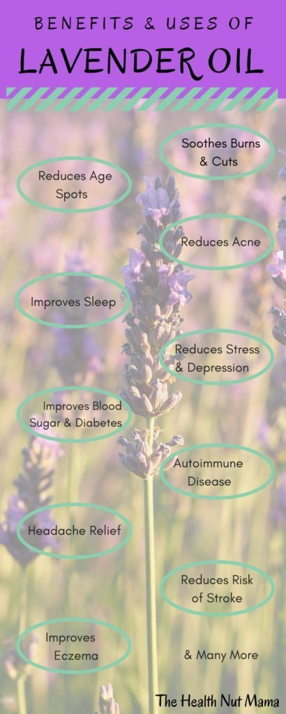 Find out 20 of the amazing Benefits & Uses of Lavender Oil. Natural Remedies for Anti-aging, soothing burns, improving sleep, healing eczema, shingles plus many many more. #antiaging #skincare #burns #wounds #depression #stress #headaches #diabetes #essentialoils #lavenderoil #lavender #stroke #sleep #insomia #mosquitobites #bugbites #shingles #sunburn #naturalremedies #thehealthnutmama