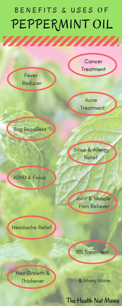 26 Amazing Uses & Benefits of Peppermint Oil. From relieving headaches, muscle & joint pain to relieving allergy symptoms & getting rid of spiders. #essentialoil #peppermintoil #peppermintessentialoil #naturalremedy #naturalremedies #headacherelief #healthy #health #thehealthnutmama