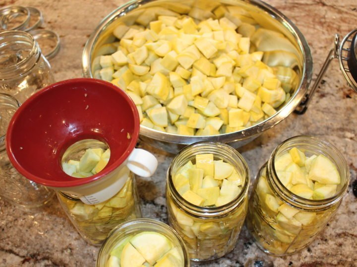 Easy step by step instructions on How to Can Squash for long term storage. #pressurecanning #canning #summersquash #squash #yellowsquash #zucchinisquash #longtermstorage #preserving #stepbystep #howto #thehealthnutmama www.thehealthnutmama.com