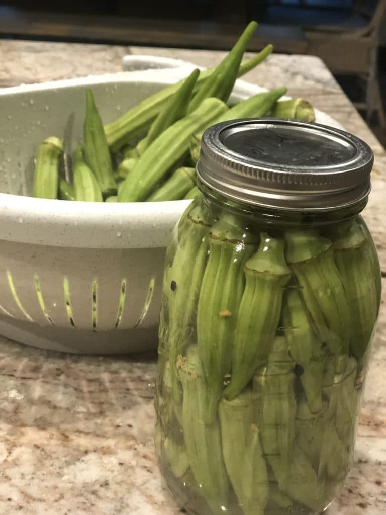 Fermented Pickled Okra has so many health benefits that we should be including it in our diet regularly! So easy & delicious! #ferment #fermentedokra #pickled #pickledokra #leakygut #preservingfood #preserving #aip #paleo #lactoferment #thehealthnutmama