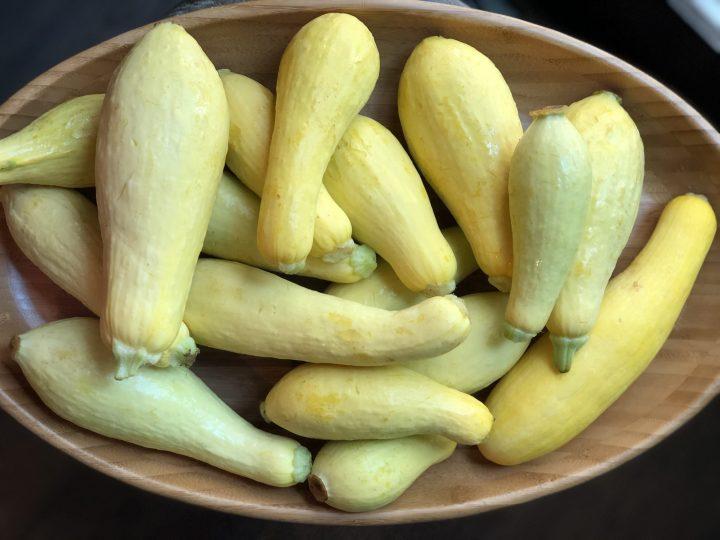 Learn How to Freeze Squash 3 ways for long term storage so that you can preserve all that wonderful squash to use for Frying or for Soups, Stews & Casseroles. Easy Step by Step Instructions. #squash #freezingsquash #longtermstorage #preservingfood #preservingsquash #yellowsquash #summersquash #zucchini #thehealthnutmama
