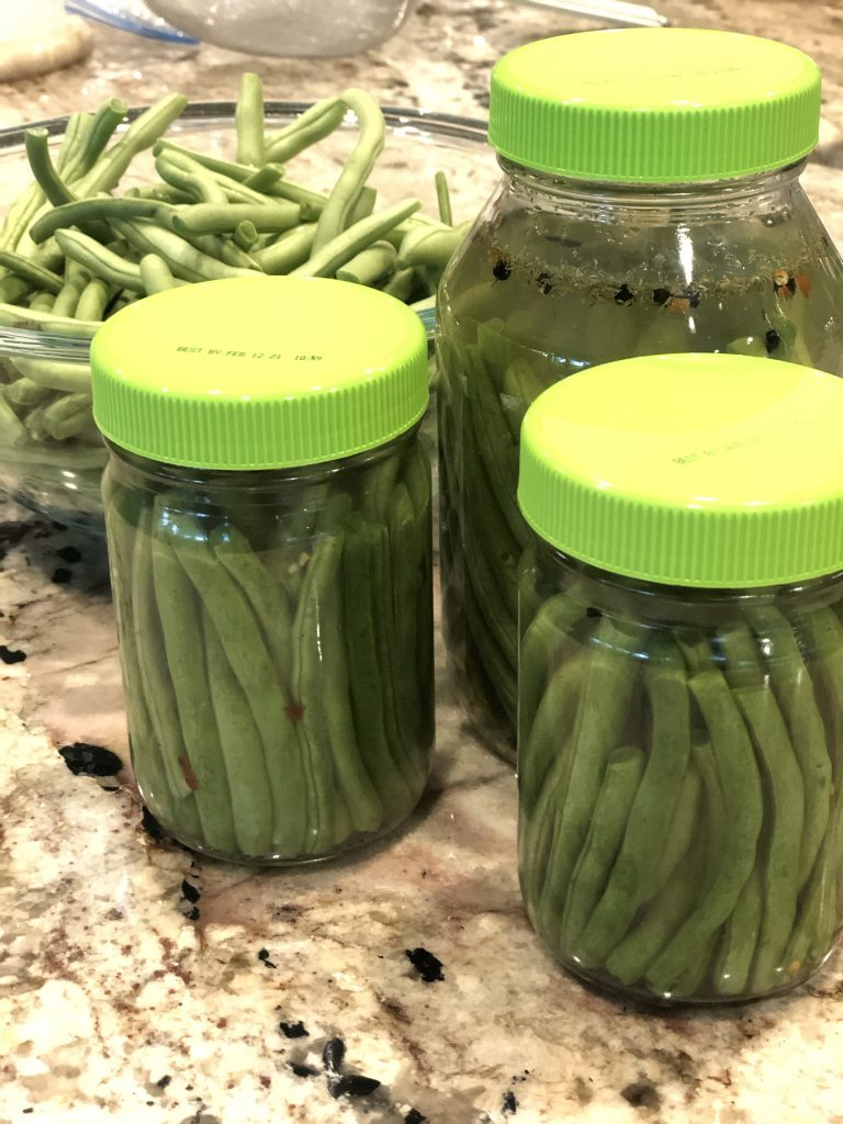 Fermented Dilly Green Beans are so easy to make & a great way to get more gut healthy natural probiotics in your diet to help heal leaky gut. Perfect for the AIP Paleo diet. #ferment #fermenting #fermented #dillybeans #greenbeans #fermentedgreenbeans #aip #paleo #leakygut #guthealthy #preservingfood #longtermstorage #thehealthnutmama